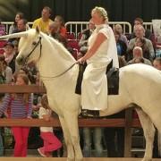 Hund und Pferd 2014